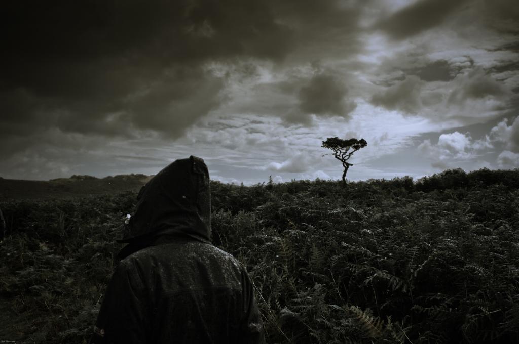 Dartmoor, tree, storm, horizon, tor, walker, rain, moor, devon, england, photography