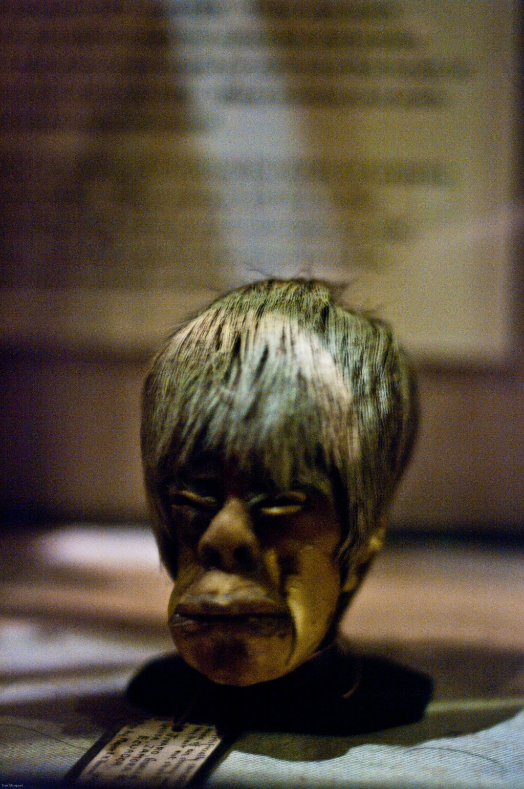 shrunken head, boris johnson, Pitt Rivers, Museum, Oxford, photography